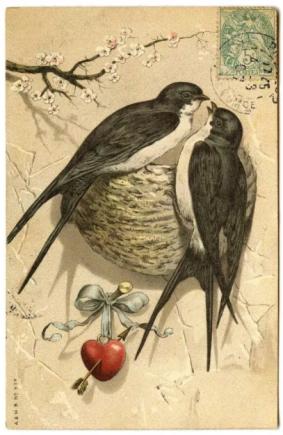 Valentine's Day Birds