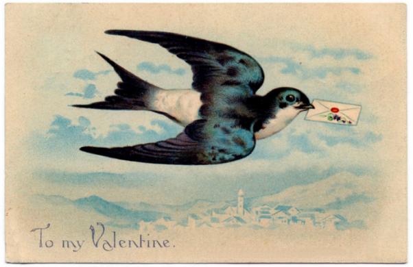 Valentine's Day Bird